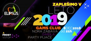 2019_party_flyer2